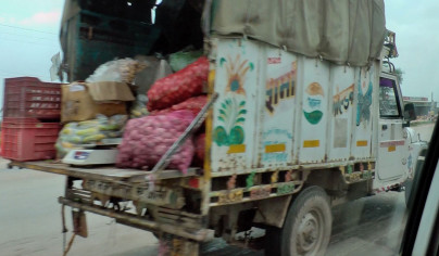 Gemüsetransporter